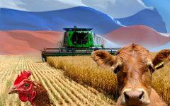 инвестиции сельское хозяйство